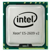 Intel Xeon Processor E5-2609v2 4C 2.5GHz