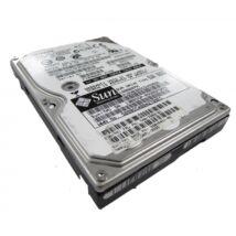 SUN 300GB 10K 6G 2.5INCH SAS HDD